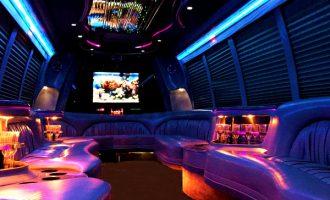 18 passenger party bus