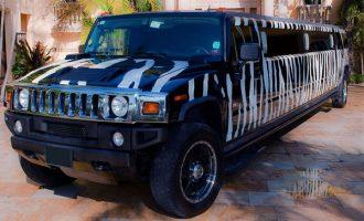 zebra hummer limo